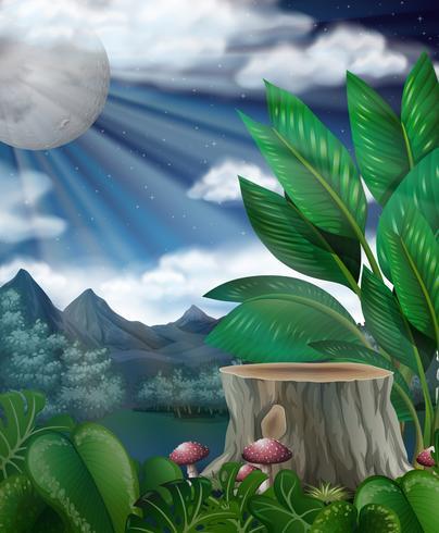 Scène met volle maan over het bos vector