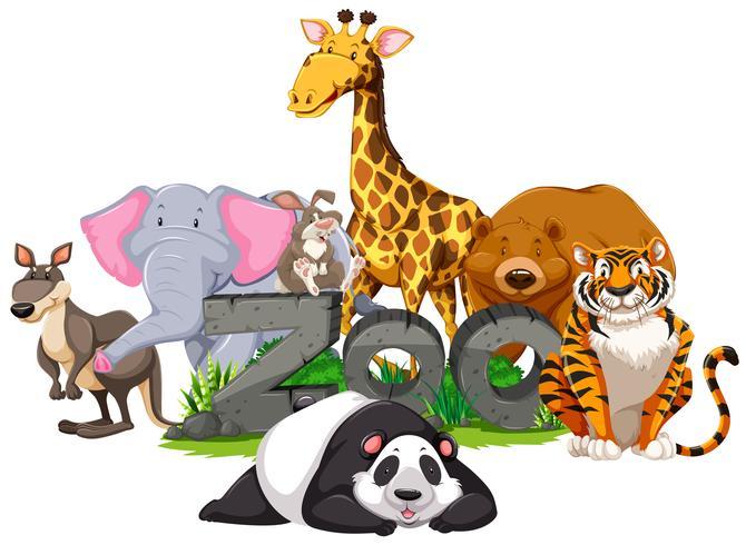 Wilde dieren rond het dierentuinenteken vector