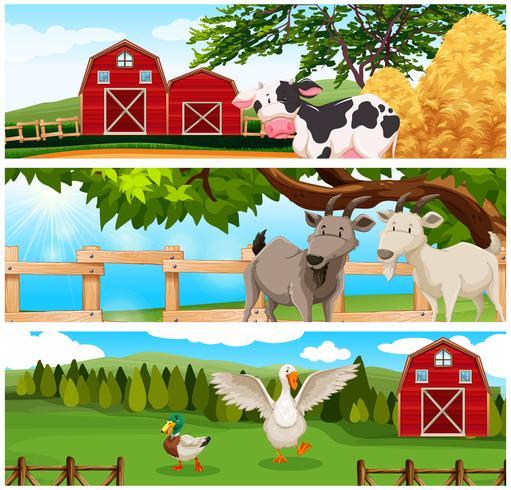 Landbouwhuisdieren op het boerenerf vector