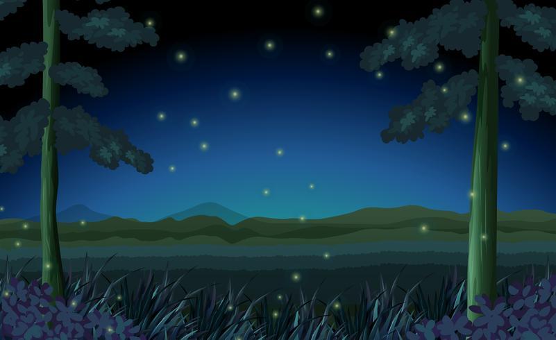 Scène met vuurvliegjes in bos bij nacht vector