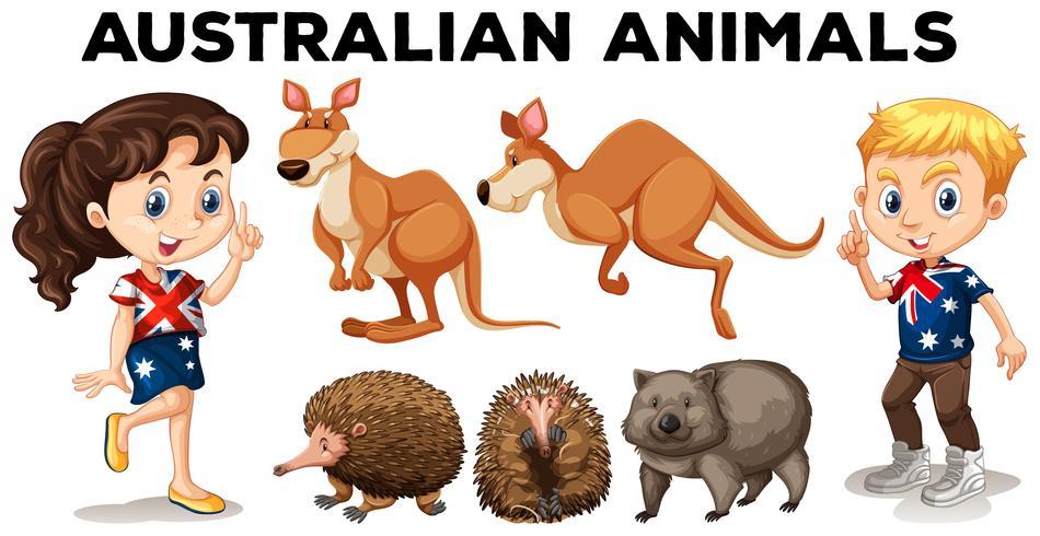 Set van Australische wilde dieren vector