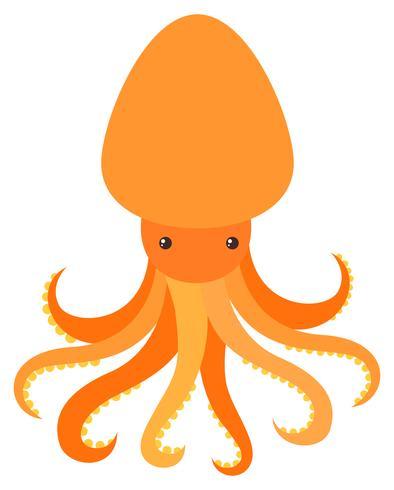 Oranje octopus op witte achtergrond vector