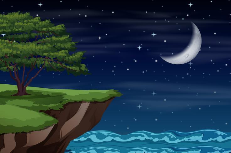 Een klif landschap 's nachts vector