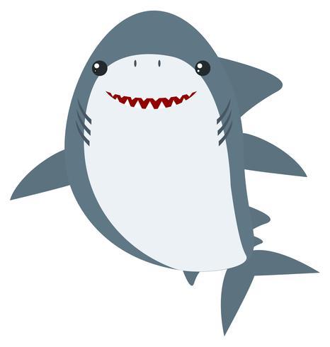 Grote witte haai op witte achtergrond vector