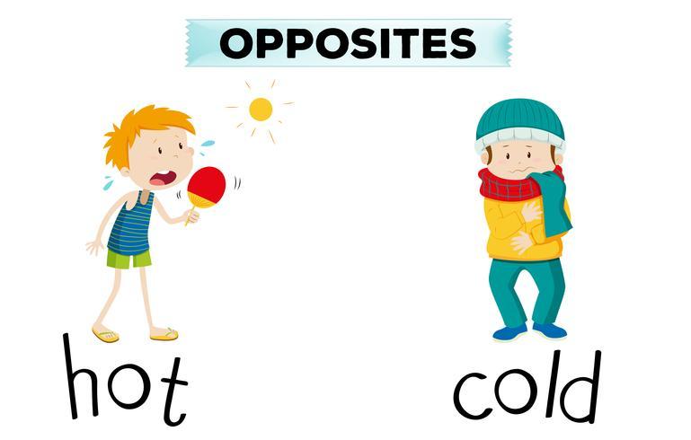 Tegenover woorden voor warm en koud vector
