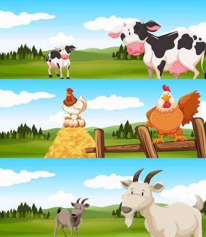 Boerderijdieren die op de boerderij leven vector