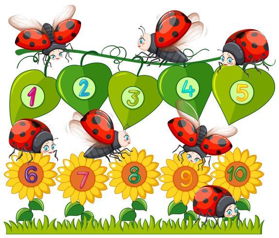 Een nummer met lieveheersbeestje en bloem vector