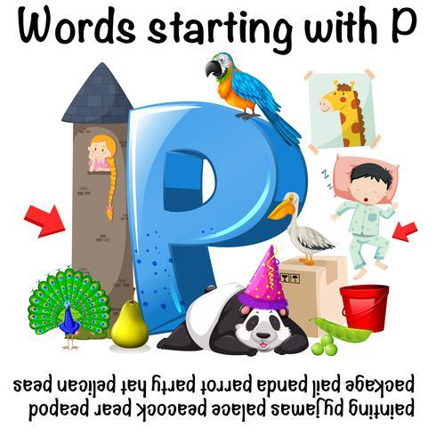 Woorden die beginnen met P op witte achtergrond vector
