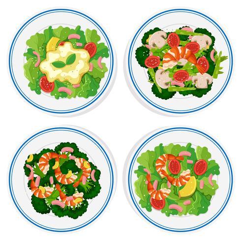 Vier soorten salade op ronde plaat vector