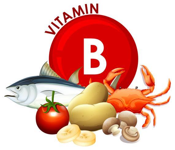 Een set vitamine B-voedingsmiddelen vector