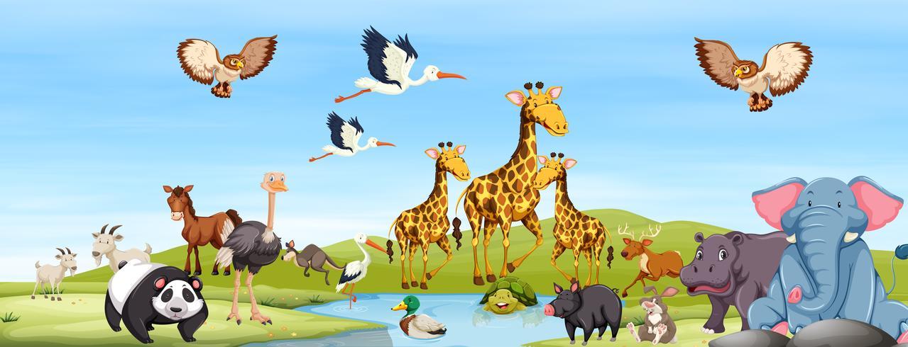 vrolijke dieren in de natuur vector