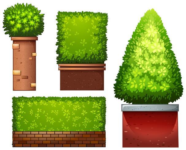 Set van groene plant vector