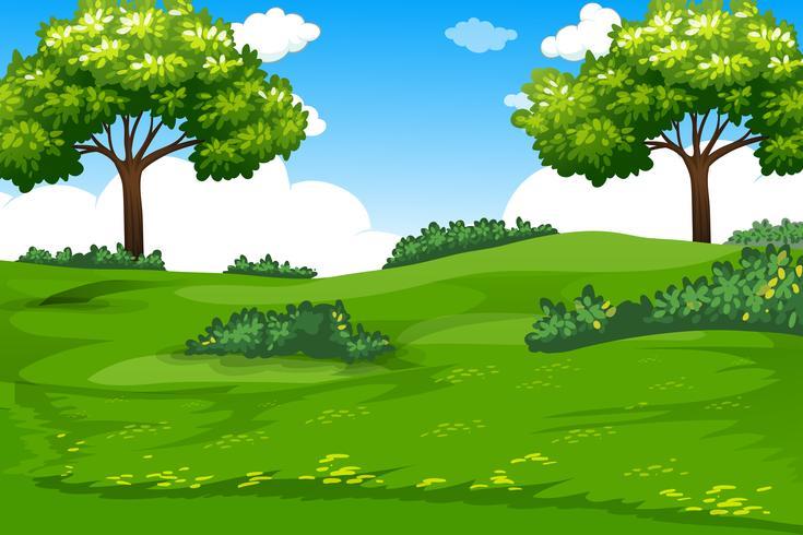 Een natuurlijke groene sjabloon vector