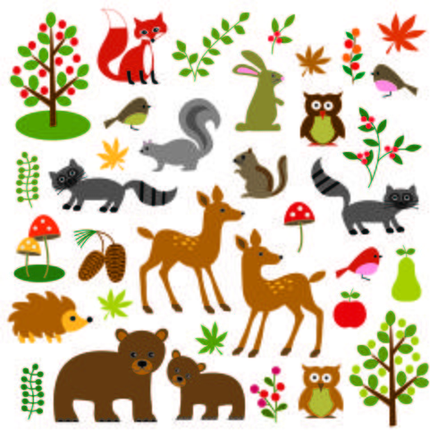 Woodland Animals Clipart vector