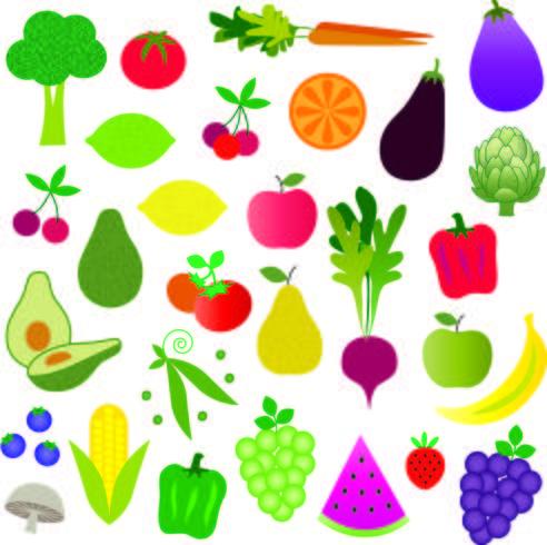 grafische afbeeldingen van fruit en groenten vector