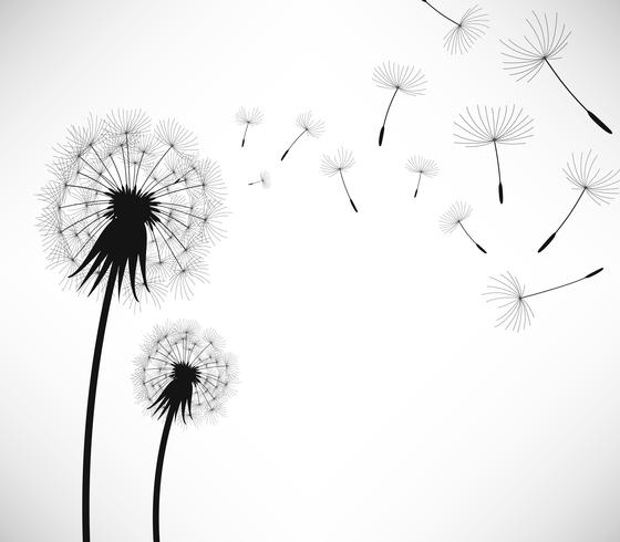 Dandelion Wind Blow Flower. vector