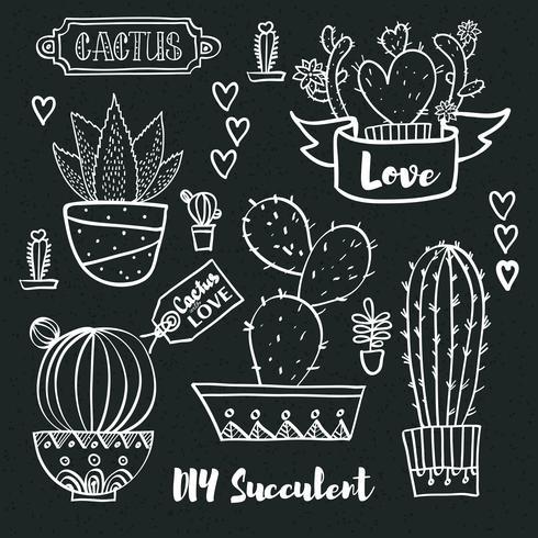 Cactussen en vetplanten in potten. vector