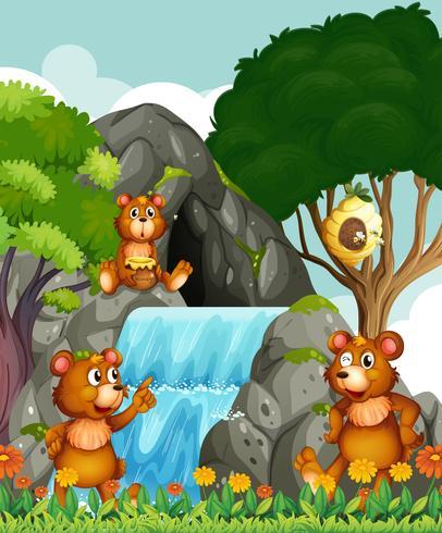 Beren ontspannen bij de waterval vector