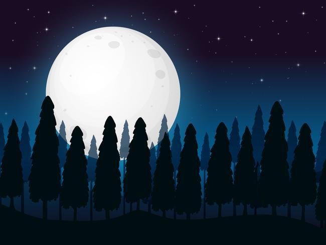 Een donkere volle maan nacht vector