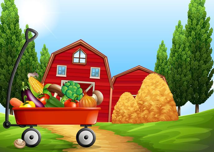 Verse producten op de boerderij vector
