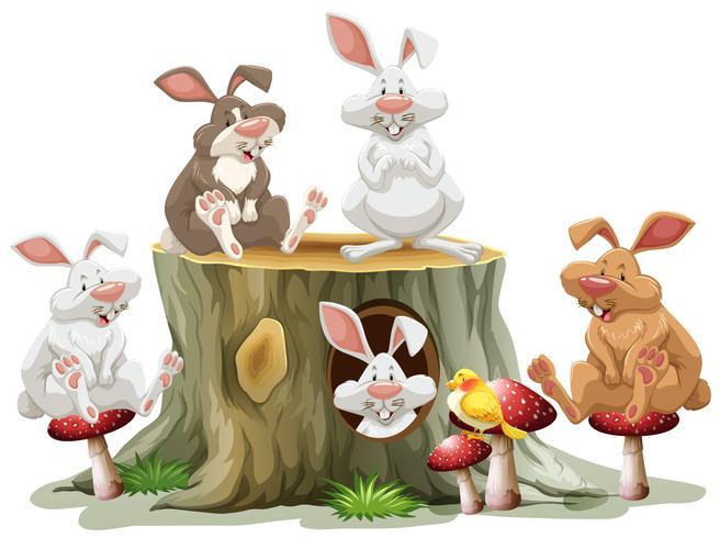 Vijf konijnen die op logboek zitten vector