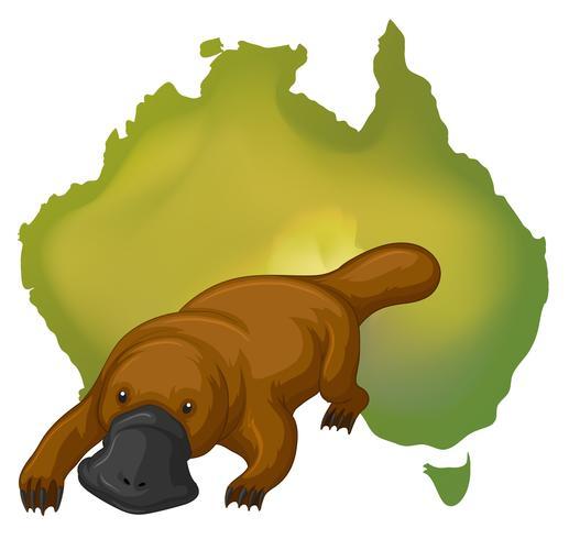 Kaart van Platypus en Australië vector