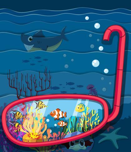 Oceaanscène met zeedieren vector
