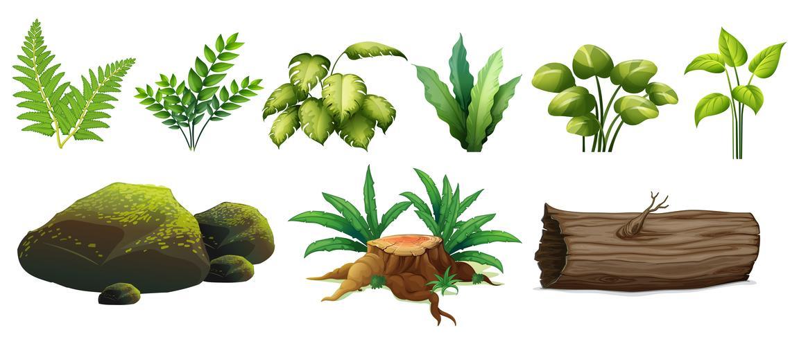 Een set boselementen vector