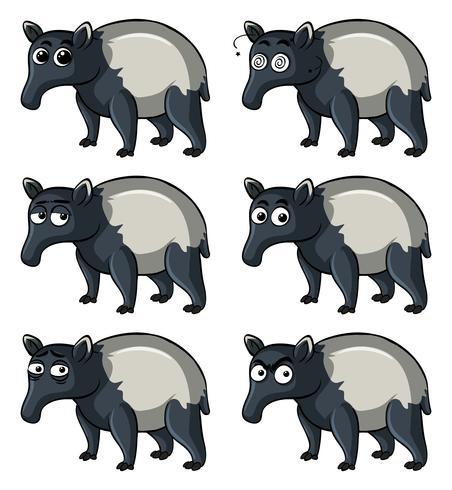 Tapir met verschillende emoties vector