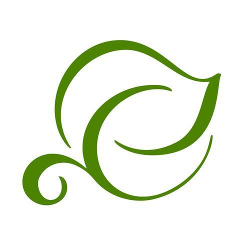 Embleem van groen blad van thee. Ecologie aard element vector pictogram symbool. Eco vegan bio kalligrafie hand getrokken illustratie