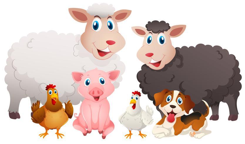 Verschillende soorten landbouwhuisdieren vector