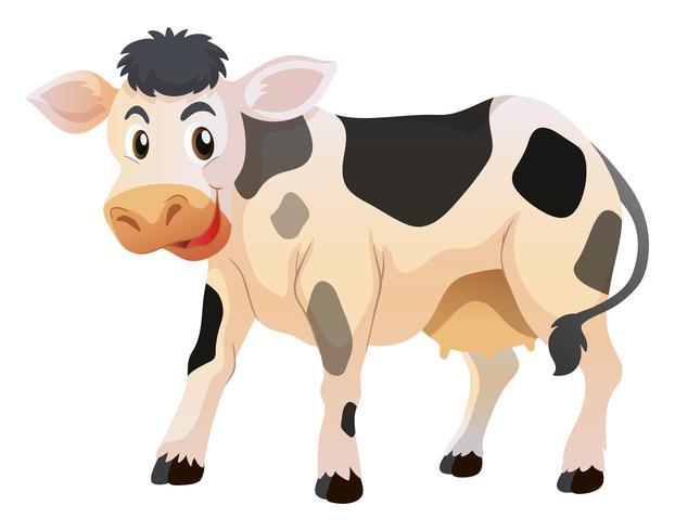 Schattige kleine koe staande vector