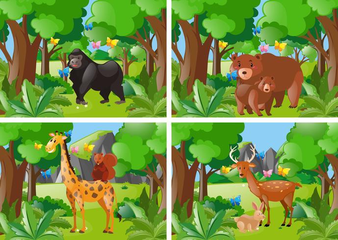 Vier bosscène met wilde dieren vector