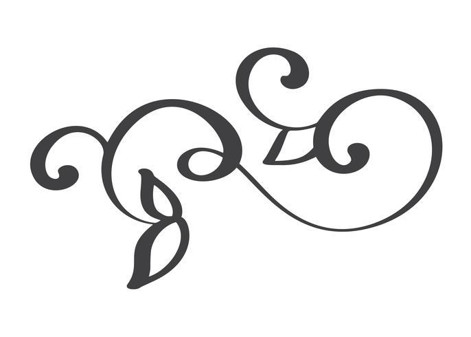 hand getrokken bloeien kalligrafie elementen. Vector illustratie
