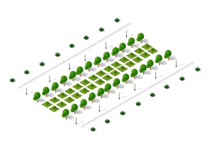 ecologische isometrische bomen vector