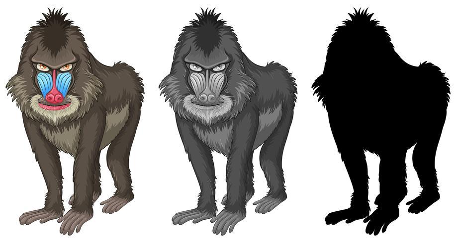 Set van bavianen baviaan karakter vector
