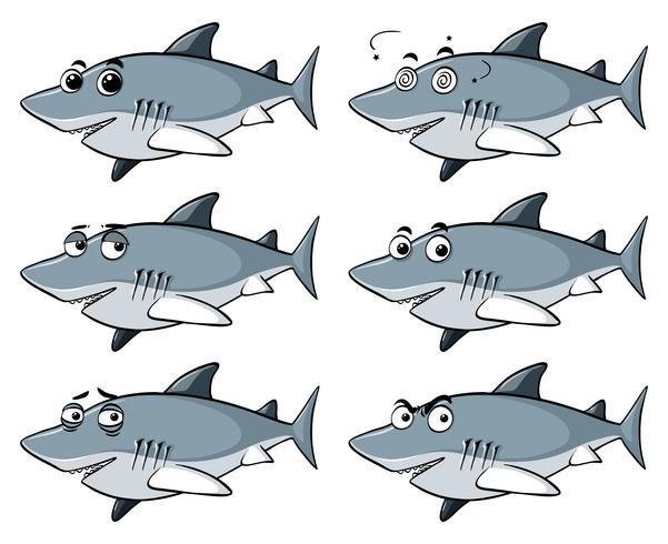 Geweldige witte haai met zes verschillende emoties vector