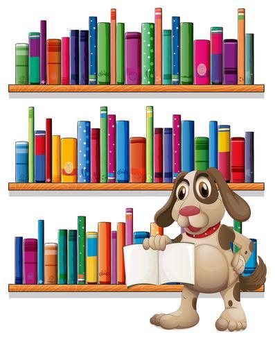 Een hond die een boek voor de boekenplanken houdt vector