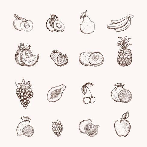 Fruit pictogrammen instellen vector