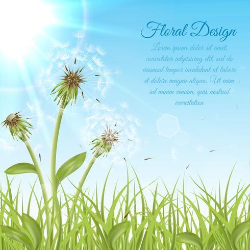 Witte paardebloemen op groen gras vector