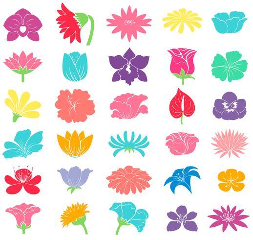 Verschillende bloemmotieven vector