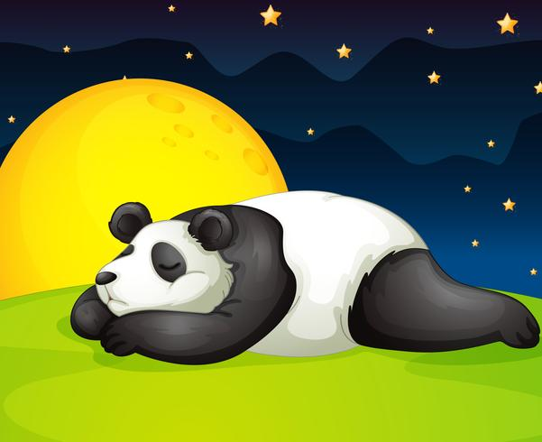 panda rustend in de nacht vector
