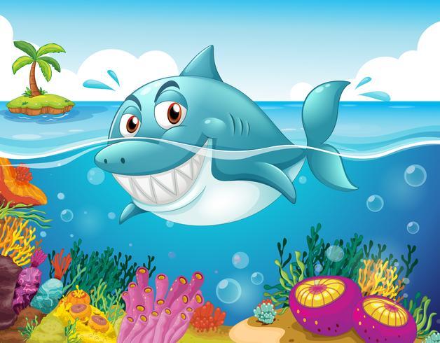 Een haai in de zee met koralen vector