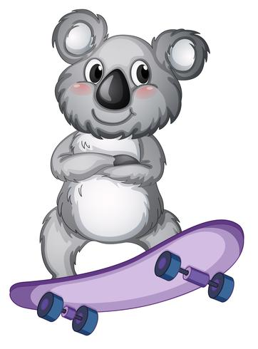 Een koala-skateboard vector