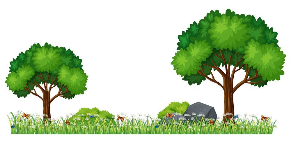 Geïsoleerde natuur plant element vector