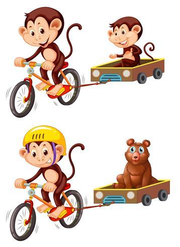 Aap fiets aanhangwagen rijden vector
