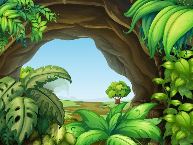 Plant in de grot vector