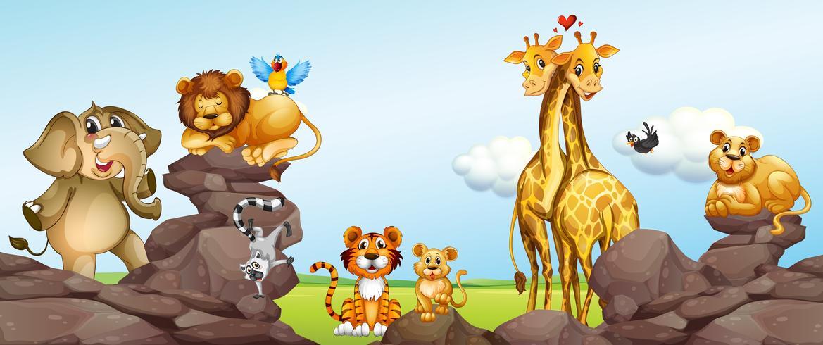 Wilde dieren in het veld vector