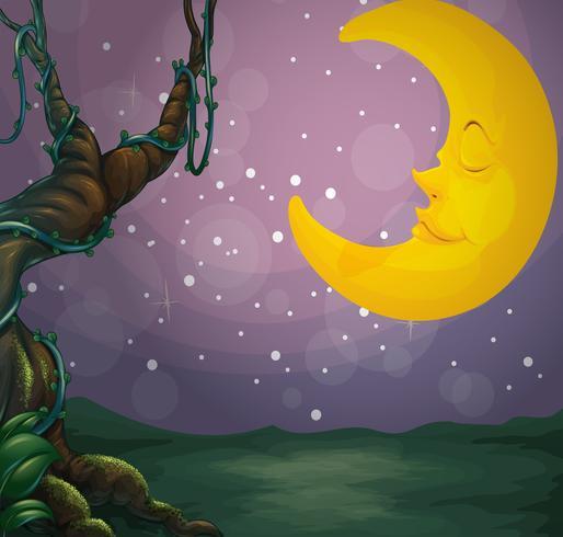 Een gigantische boom en een slapende maan vector