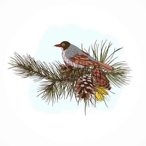 Pijnboomtakken met vogel vector